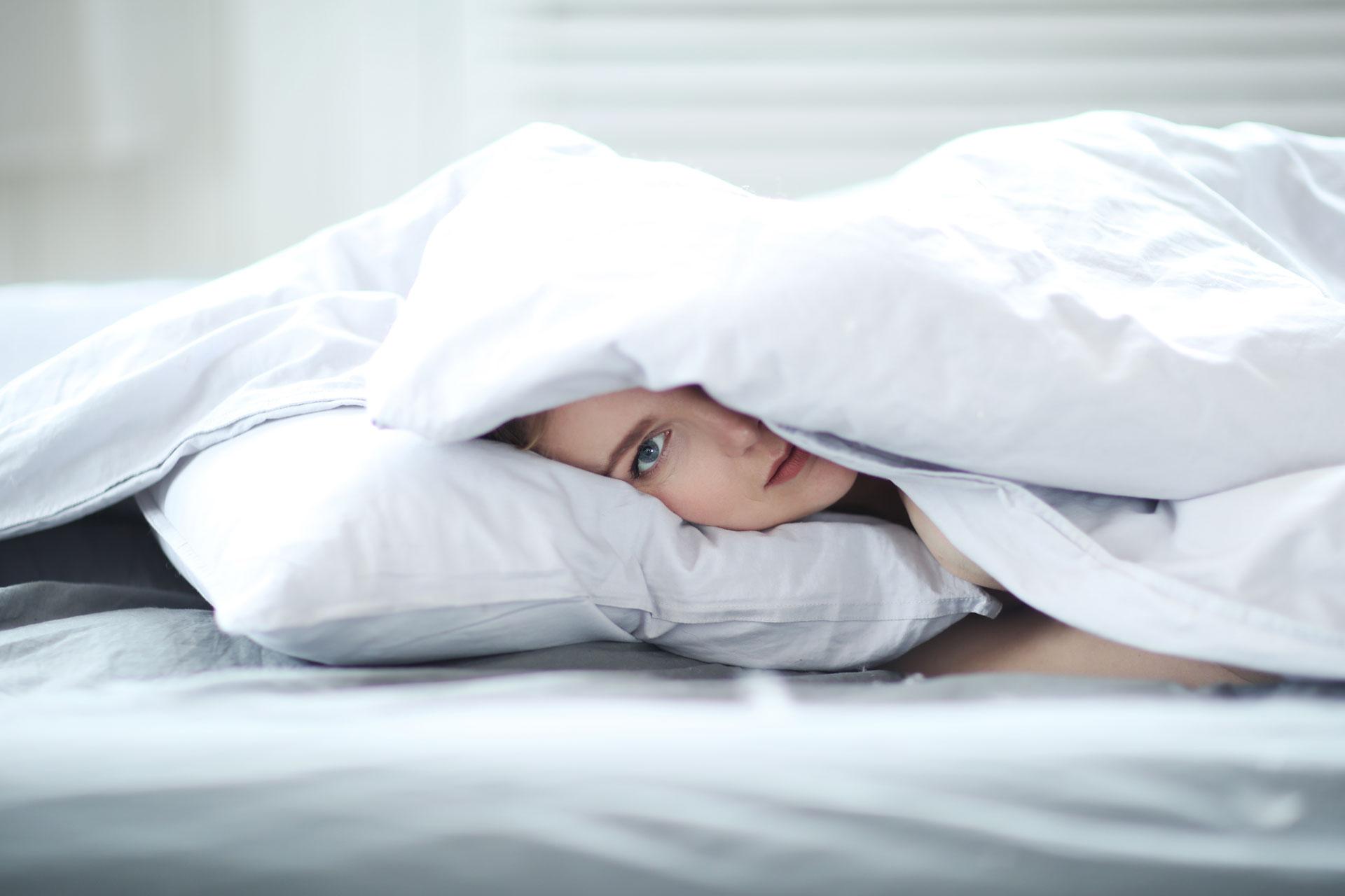 Decak ispod jorgana lezi na jastuku